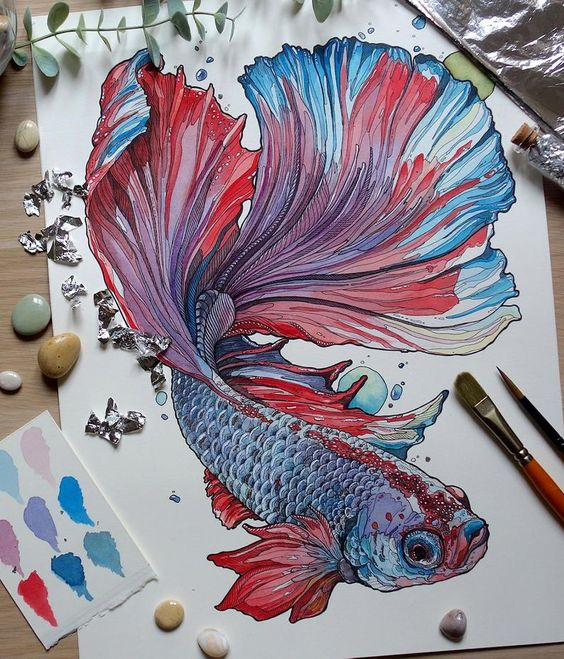 PRINT limited edition Siamese fighting fish 01 | Etsy