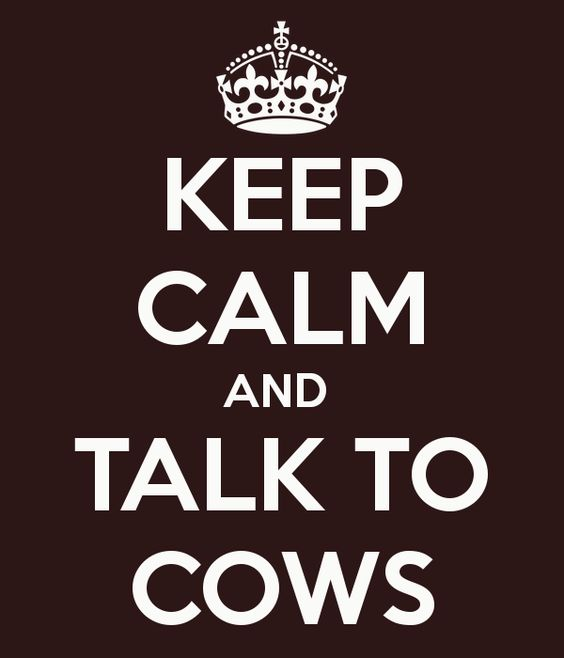 "KEEP CALM AND TALK TO COWS  This one must be for Bill. Mine says ""KEEP CALM AND DRINK WINE!"