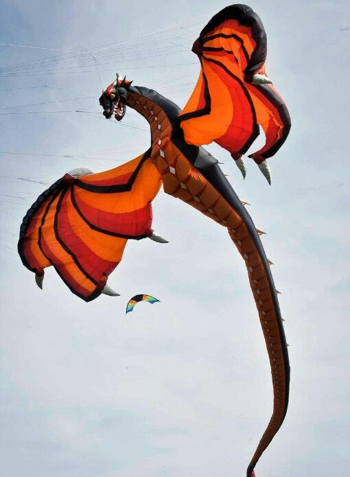 Beautiful dragon kite, I hope to see one in person at one of the kite festivals