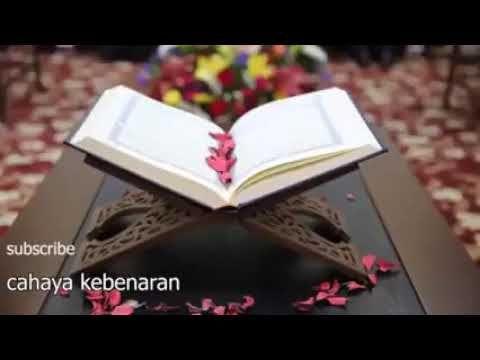 آيات القرآن الكريم تريح النفس استرخي و أستمع Youtube Listen To Quran New Things To Learn Stress Relief Meditation