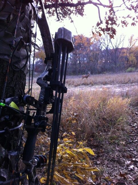 Mission bow and decoy ready