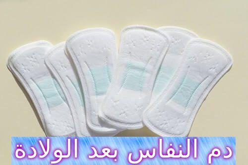 دم النفاس بعد الولادة ومعلومات مهمة عنه Wedding Sneaker Wedding Shoe Sneakers