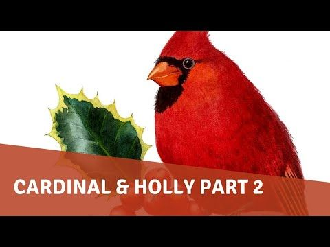 1 Watercolor Painting Tutorial Cardinal And Holly Part 2