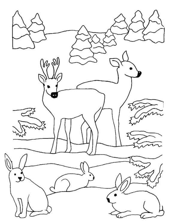 Hirsche Und Hasen Im Wald Winterbilder Ausmalbilder Stickereimuster Ausmalbilder Tiere