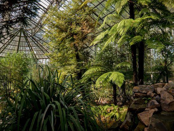 Das Subantarktishaus im Frankfurter Palmengarten