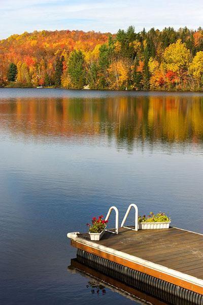 Astuces pour réussir ses photos d'automne