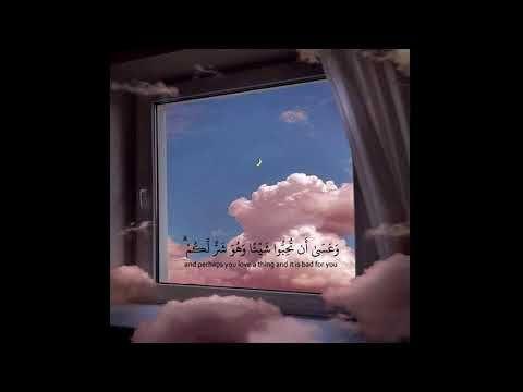 حالات واتس اب قران اية قرانية قصيرة لراحة قلبك ستوريات انستا Quran Youtube Quran