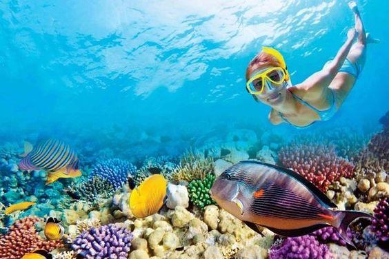 Mauritius travel guide - letsaskme