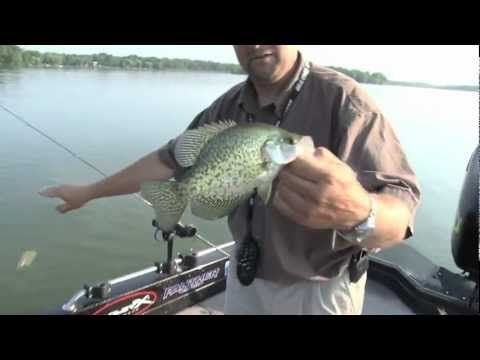 Tips for catching midsummer crappie fishing pinterest for Crappie fishing secrets