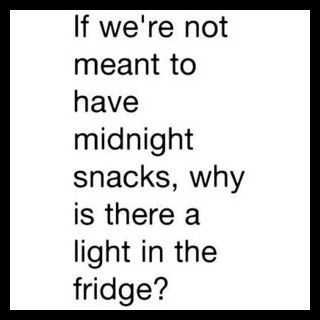 the light is for the Penguin that lives in the fridge of cause!