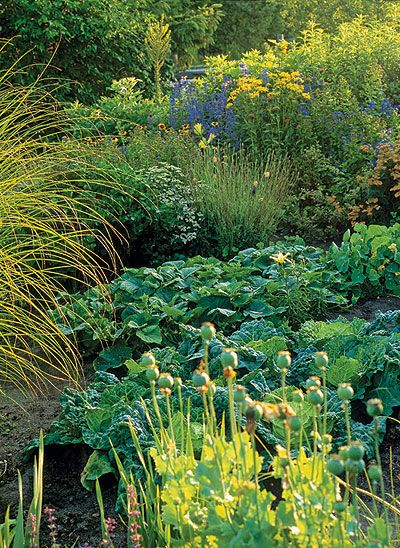 Blend your fruits, vegetables and herbs with the flowers in your garden to create a potager.