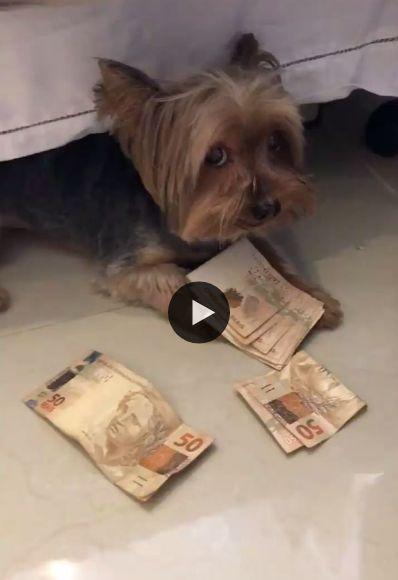 Quando alguém quer tomar o dinheiro que você ganhou.