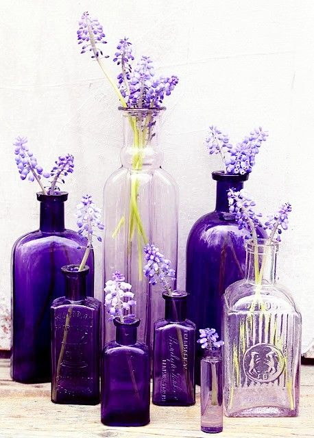 (via Purple Purple …