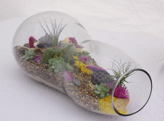 Oblong Glass Terrarium Garden