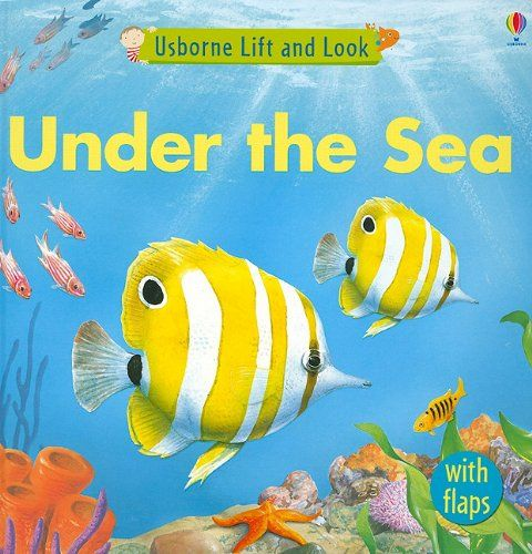 Under the Sea (Usborne Lift and Look) by Jessica Greenwell. Great for under water themes = )
