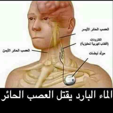 العصب الحائر زاكي Movie Posters Medical Poster