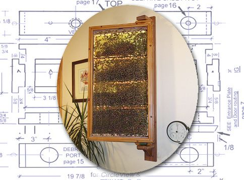 how to build an observation hive