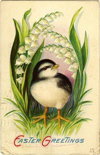 chick and lily of the valley vintage card: