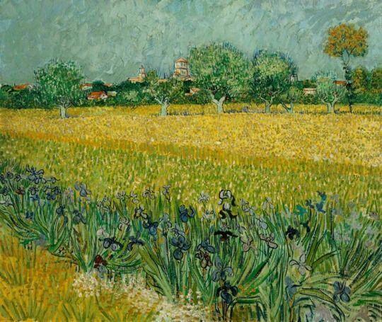 Field With Flowers Near Arles By Vincent Van Gogh Artist Van