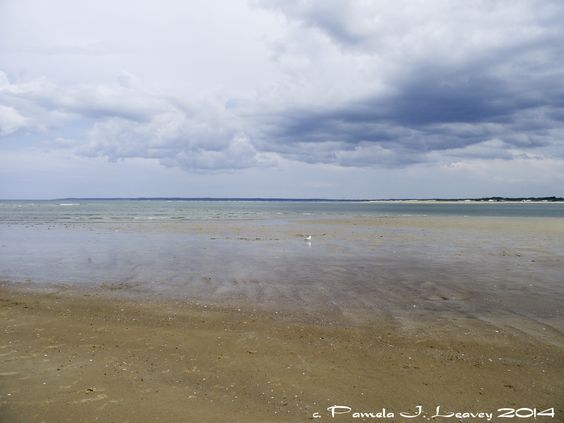 Photo: Low Tide at Sandy Point, Plum Island, MA ~ c. Pamela J. Leavey - See more at: http://pamelaleavey.com/#sthash.yRZ1tD76.dpuf