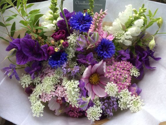 Bouquet of phacelia, scabious, physostegia, ammi majus, cornflowers, salvia, cosmos and achillea