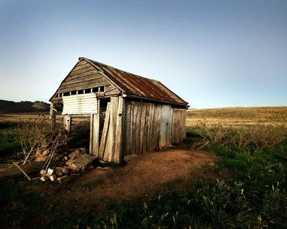 Abandoned Shed, Primrose Valley