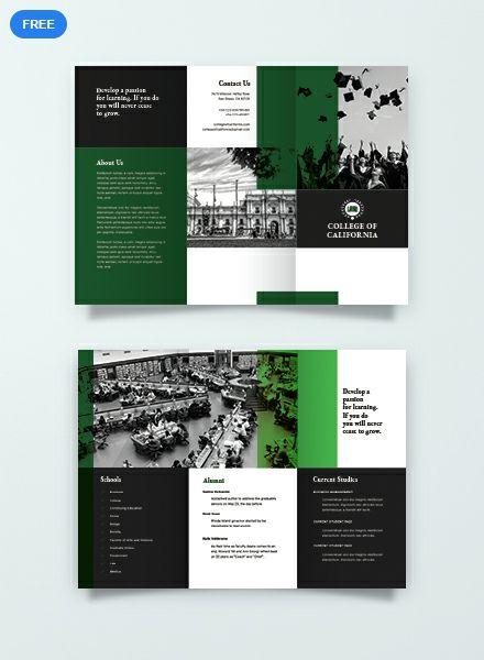 Free Creative College Brochure Brochure Design Template College