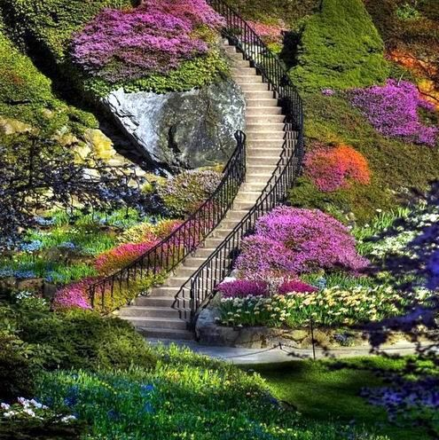 Image result for beautiful places pinterest