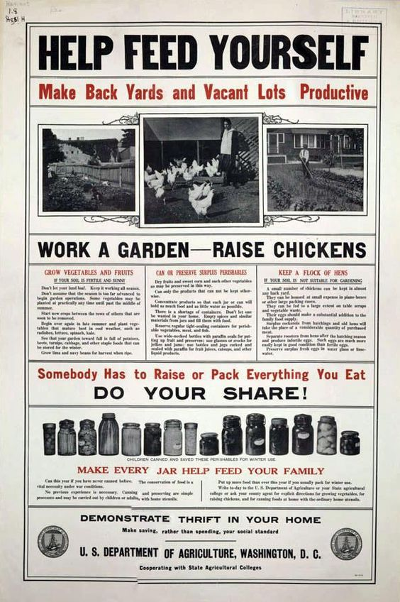 Raise Chickens / US Dept Agriculture