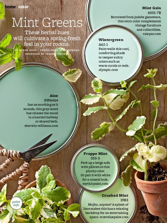 Mint greens better homes and gardens mag