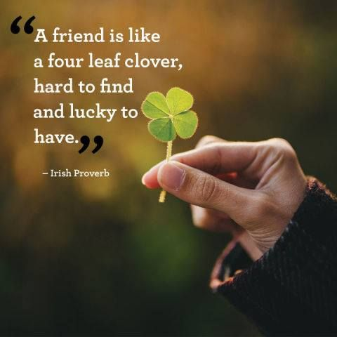 four leaf clover hard to find As legend it has it, finding a four-leaf clover is supposed to be a sign of good luck if we put our collective scientific knowledge to the task, however, we stand a better chance of finding a lucky charm.