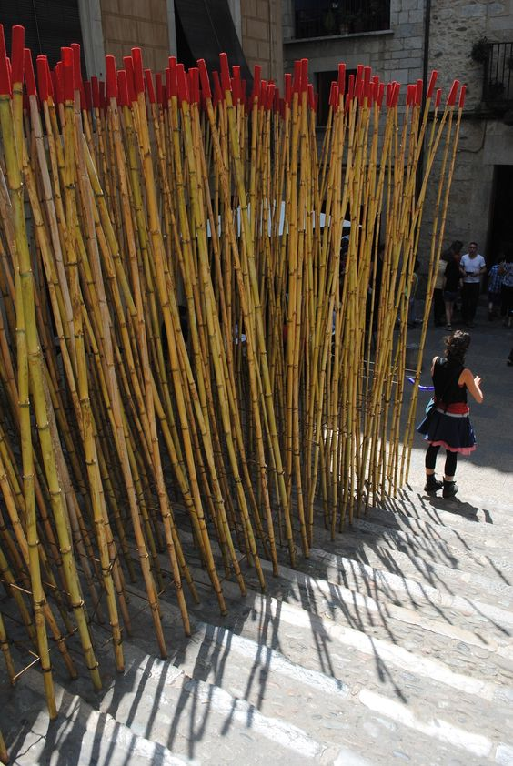 Temps de Flors 2014 Bamboo