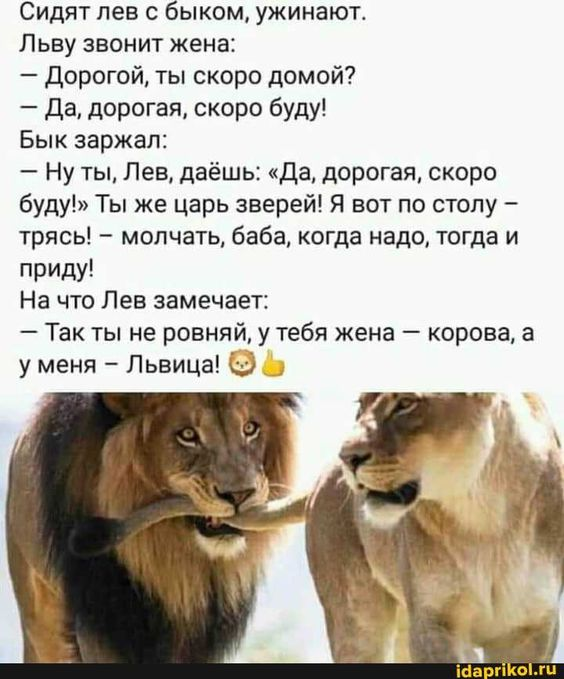 Как говорят в Одессе: Нельзя иметь всё сразу- и море, и по - Такого вы еще не видели :) / АйДаПрикол :)