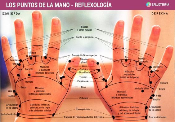 Los puntos de la #mano - #reflexología  http://www.saludterapia.com pic.twitter.com/l72SIFub0d