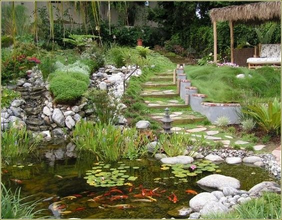 Landscape design and installation of low water use native for Design of water harvesting pond