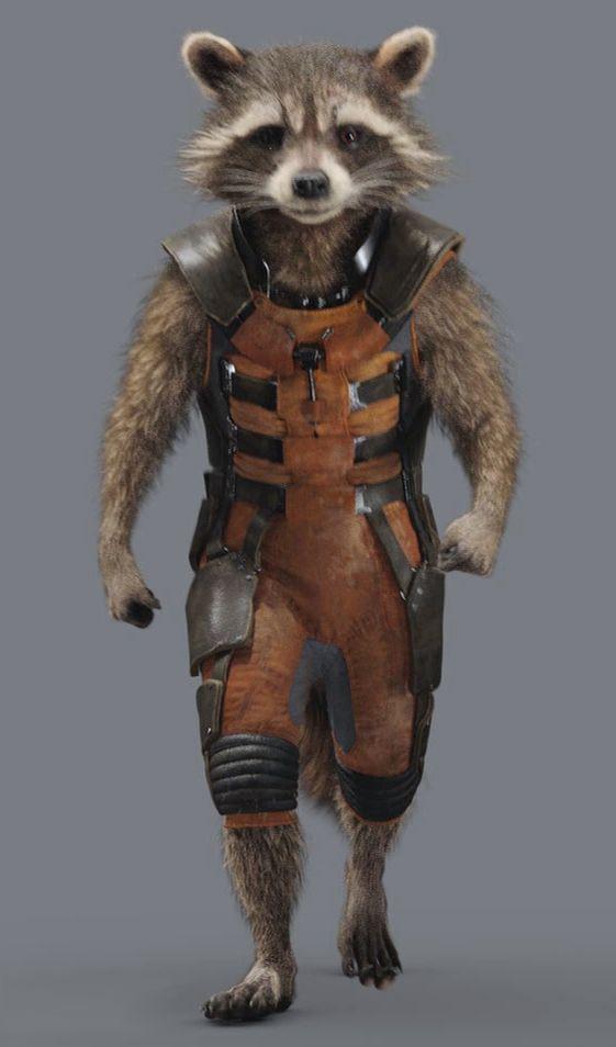 Gadget Raccoon, Constelación de la Familia 942d89bf13bb4d3cd5ba02d389aa1039