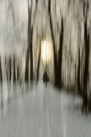 `Icy Morning Walk` by K.Walsch (looks like magic to me) by caitlin