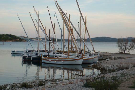Beautiful Dalmatia