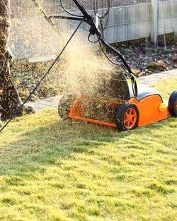 Scarifier le gazon : Comment prendre soin de sa pelouse - Linternaute