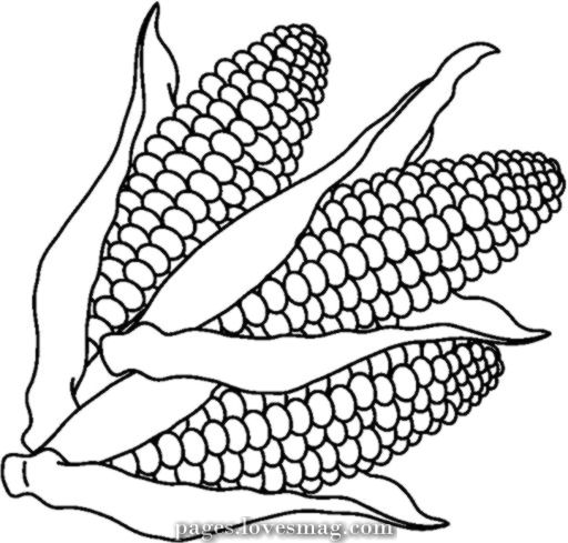 Free Coloring Pages Of Corn Clip Artwork Free Coloring Pages Vegetable Coloring Pages Coloring Pages
