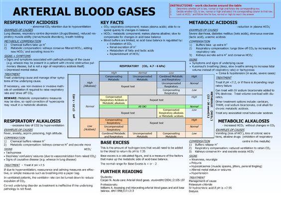 arterial blood gas 2 essay