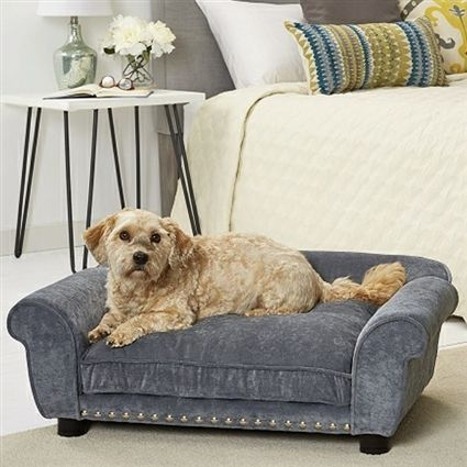Luxury Velvet Sofa Beds For Dogs Up To 30 Lbs In 2020 Luxury Dog Sofa Dog Sofa Bed Dog Sofa