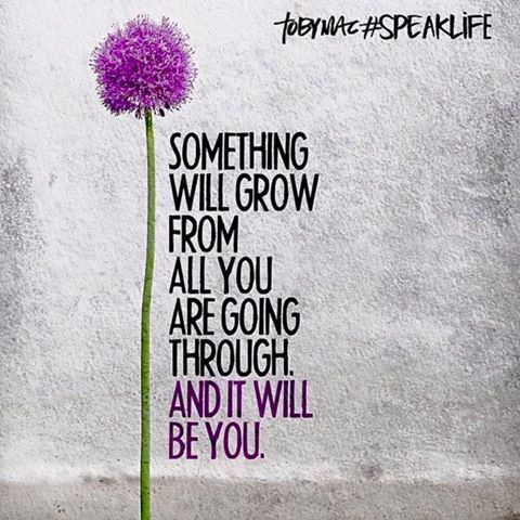 Something will grow from all you are going through, and it will be you!: