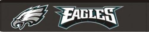 Philadelphia Eagles Seatbelt Shoulder Protector Pads Visit our website for more: www.thesportszoneri.com