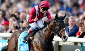 Talking Horses: Saturdays best bets plus all the latest racing news