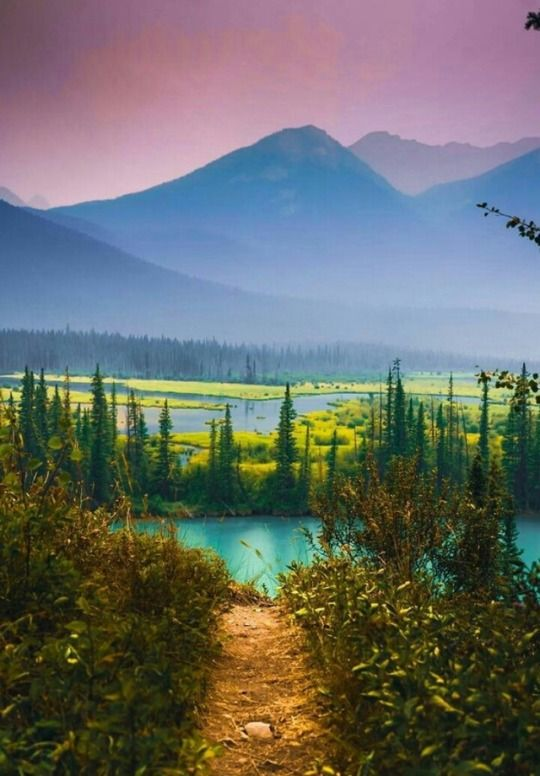 Paradise Canada By Derek Butler Paradise Canada Mountains Mountain Trees Nature Landscape With Images Scenery Pictures Nature Photography Beautiful Nature