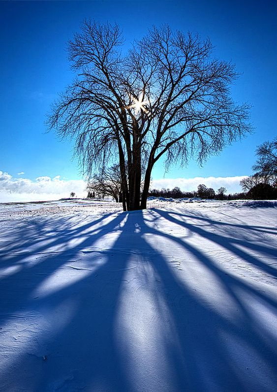 """A Blustery Blue"" --The day of the Polar Vortex Horizons by Phil Koch"