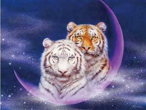 Tiger Lowen Engel Fantasy Tiere Weihnachten Blumen Uvm Tiger Pictures Cute Tiger Cubs Wild Cats