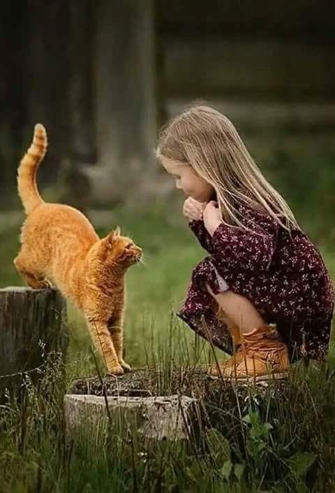 Best Friends Madchen Und Katze Animaux Chat Gratuit Chats Et Chatons