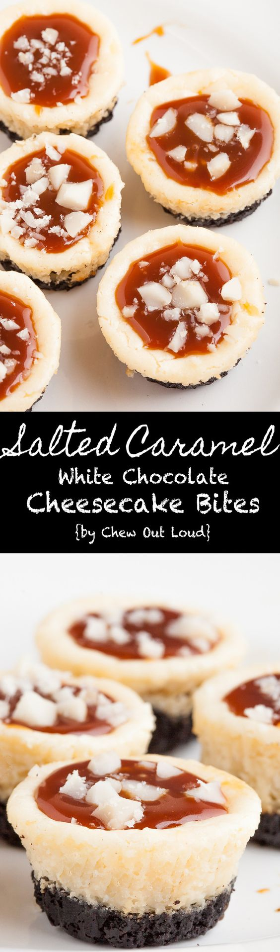 Salted Caramel White Chocolate Cheesecake Bites Individual Servings Dessert Recipe via Chew Out Loud - New York style, dense, rich, smooth, and bite-sized. Perfect holiday dessert recipe.
